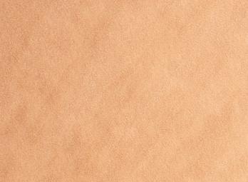 Le carpet